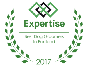 Image result for expertise 2017 best dog groomers in portland